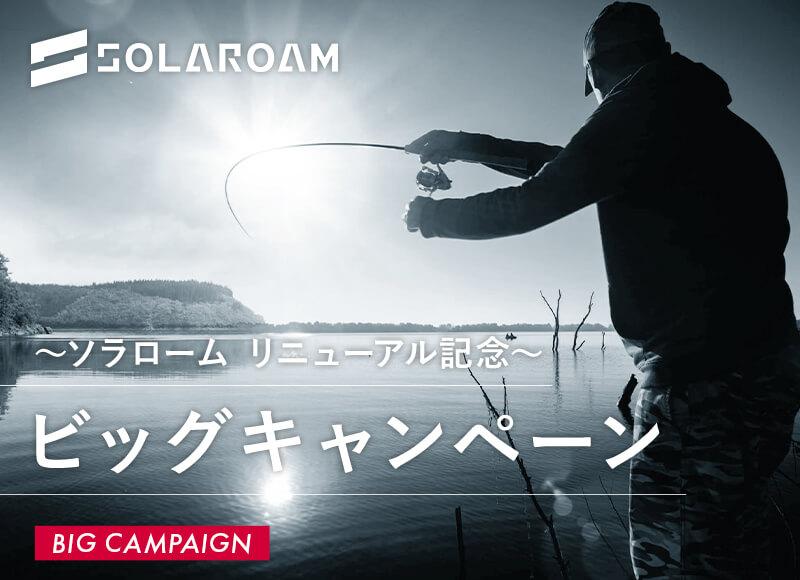 ソラロームリニューアル記念 ビッグキャンペーン